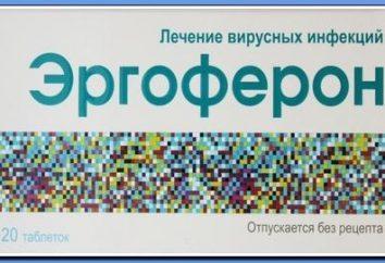 """Droga """"Ergoferon"""": istruzioni per l'uso"""