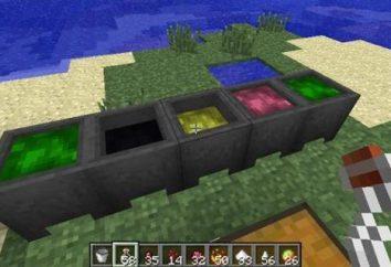 Details darüber, wie das Kochen Rack in Minecraft zu tun.