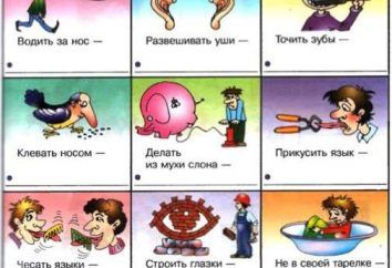 Idioma de la lengua rusa (con el ensayo fraseología sobre cualquier tema)