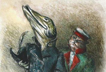 """favola di Krylov """"Il luccio e il gatto."""" Modo per sé"""