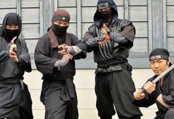 Ninja techniki. Japońskie sztuki walki