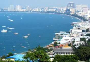 Pattaya: le escursioni. Cosa escursioni per visitare a Pattaya?