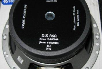 Système acoustique DLS R6A: spécifications techniques, description, avantages et inconvénients