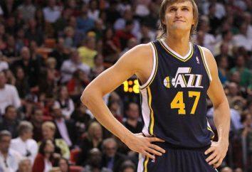 Giocatore di pallacanestro Andrei Kirilenko: Biografia, vita personale e fatti interessanti