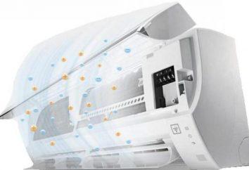 Acondicionadores Bork Y700: opiniones, instrucciones