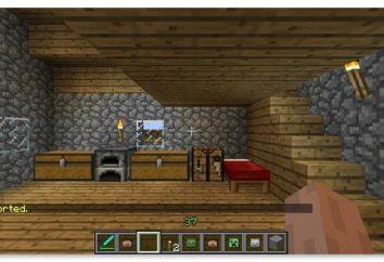 I dettagli su come teletrasportare al giocatore in Minecraft