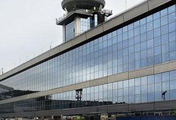 Consejos sobre cómo llegar al aeropuerto Domodedovo
