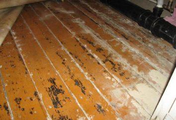 Tynkowanie Wood Floor: co wybrać? Technologia gotowanie samoobsługowe