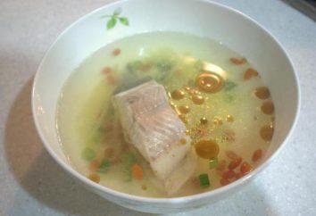 Delizioso pranzo – zuppa di pelengasa