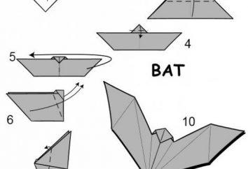 Klasa Master: bat origami