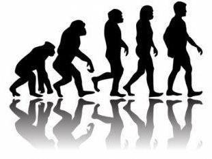 Pithecanthropus – è … L'ipotesi delle origini dell'uomo