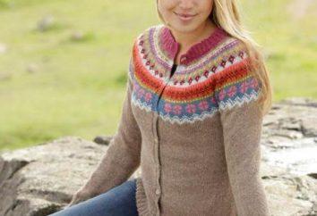Camisolas na moda com agulhas de tricô: esquemas, descrição do trabalho