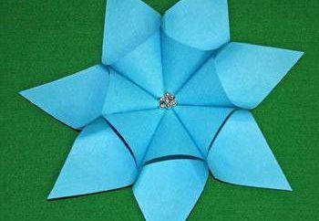 stella a sette punte di carta: schema corporeo