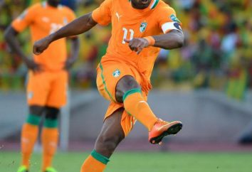 Breve biografia di Didier Drogba