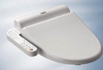 Japoński Toaleta: w jaki sposób był i jaki był