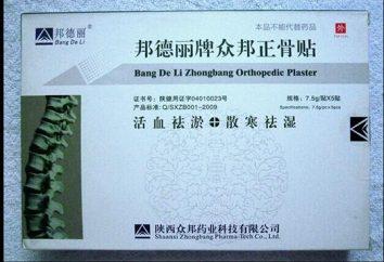 ZB Soulagement de la douleur: avis. plâtre orthopédique chinois pour les joints