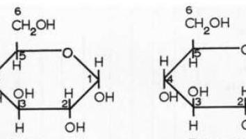 Che cosa è il glucosio? Ottenere il glucosio e le sue proprietà