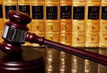 Rodzaje dyspozycje w zakresie prawa karnego: przykłady. Pojęcie i rodzaje dyspozycje i sankcji