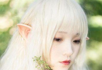 Queste cuffie originali vi farà un vero e proprio elfo!