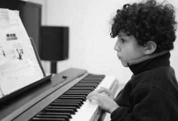 Casio CDP 130: comentários de pianos