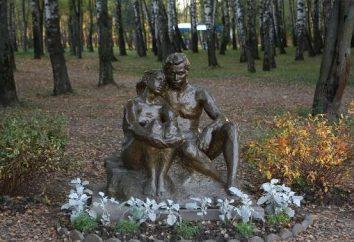 Gdzie jest Komsomołu Park Tula?
