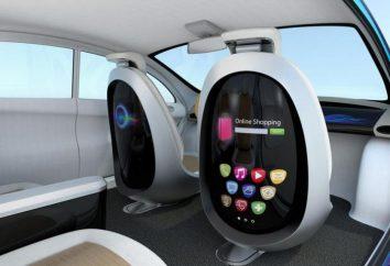 Chcesz jeździć bezzałogową taksówką? Przejdź do USA