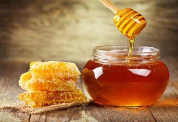 I vantaggi di miele per gli uomini: ricette, caratteristiche, funzionalità delle applicazioni e recensioni