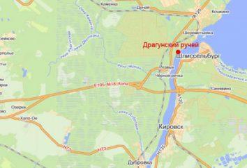 """""""Dragoon Brook"""" (Erholungszentrum): ein Foto, Preis, Adresse und Bewertungen"""