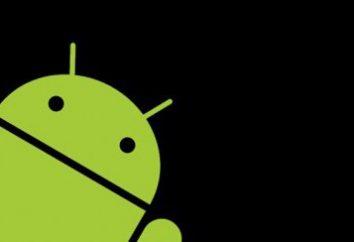 """Najpopularniejsze aplikacje dla """"Android"""". Najbardziej niezbędne programy dla Androida"""