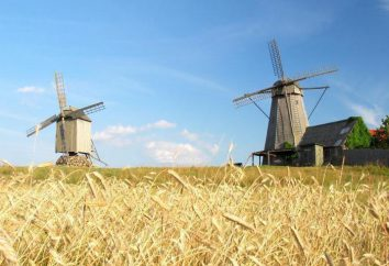 Saaremaa (Estonie): description et attractions. Vacances dans les pays baltes