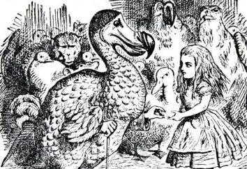 la storia di uccelli dodo di sterminio