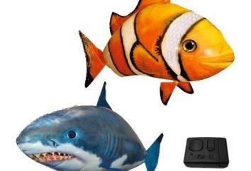 Flying Fish – traf ein Umsatz in der Welt von Kinderspielzeug