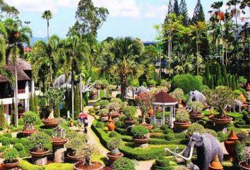 "Tropical Park ""Nong Nooch"" Tajlandia: Opinie turystów"