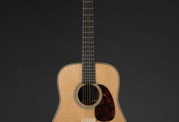 Guitarra de 7 cordas: tuning, história, design e características do jogo