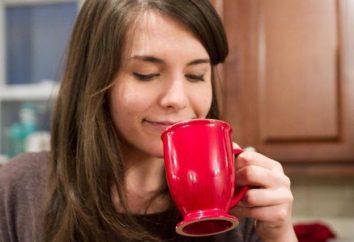 Analisador olfativo: estrutura e função. Características da idade do analisador olfativo