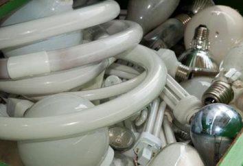 Lo smaltimento delle lampade contenenti mercurio: Principi SWAT e lo stoccaggio, la responsabilità
