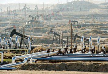 Cosa succederà quando gestisce il petrolio? Quanto è abbastanza petrolio? Le compagnie petrolifere