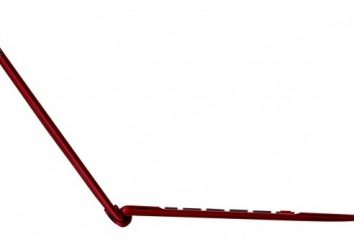 """Tablet """"Asus TF300TG"""": Características"""