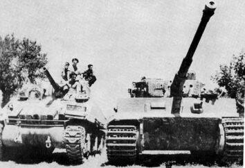 """""""Sherman"""" frente a """"tigre"""". Tanques de la Segunda Guerra Mundial"""