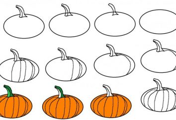 Cómo dibujar una calabaza de Halloween?