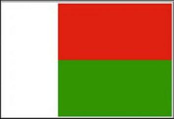 Bandiera del Madagascar: descrizione, valore, simile agli altri personaggi