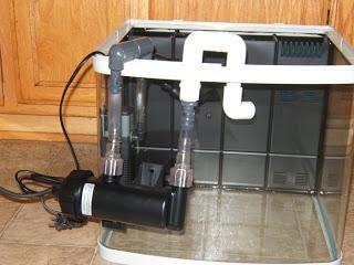 esterilizadores ultravioleta de acuario: las ventajas y características de uso