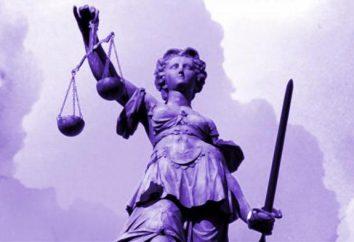 Droit constitutionnel en tant que science. Communication avec d'autres branches du droit. Signification système juridique dlyarossiyskoy.