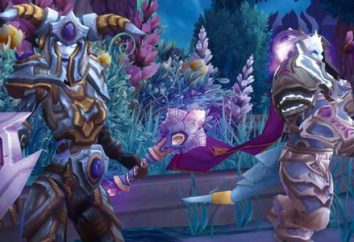 Come libero di giocare a World of Warcraft: il pagamento dei server oro e pirati