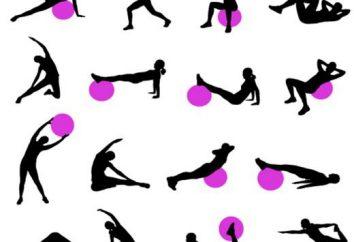 Ćwiczenia na plecy w siłowni dla kobiet i mężczyzn