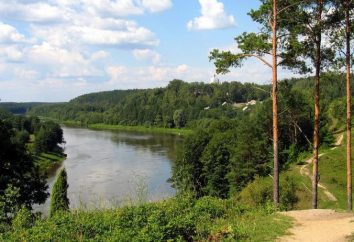 Lituânia, Druskininkai: passeios, repouso. Resorts da Lituânia