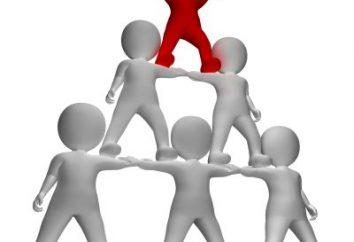 Come per dare una risposta al dipendente? caratteristiche del campione dipendente