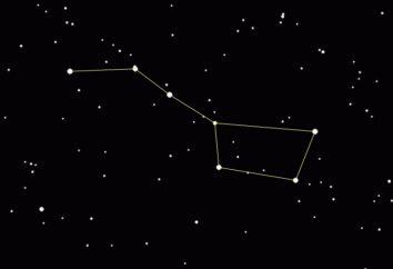 Numero di stelle brillanti nel Grande Carro. Quante stelle nella costellazione dell'Orsa Maggiore