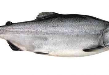 Przepis na białym łososia. Pyszne dzień ryby