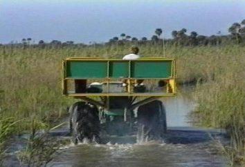 buggies pântano caseiros – a melhor solução para conquistar off-road